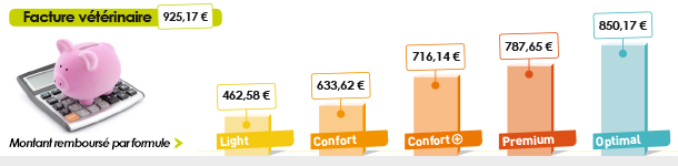 Facture vétérinaire 925,17 € / Light : 462,58 € / Confort : 633,62 € / Confort + : 716,14 € / Premium : 787,65 € / Optimal : 850,17 €