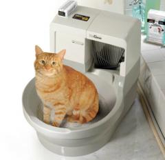 liti res pour chats les hackers piratent les syst mes sant vet. Black Bedroom Furniture Sets. Home Design Ideas