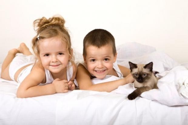 Dormir avec son chat ou chien comporte t il des risques sant vet - Enfant qui ne veut pas dormir dans son lit ...