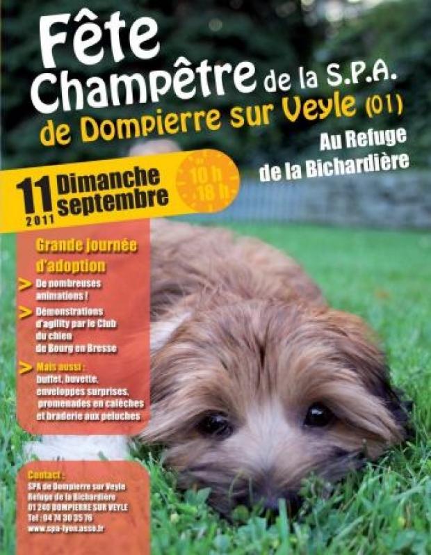Dompierre-sur-Veyle : à la rencontre des chiens et chats du refuge le 11 septembre