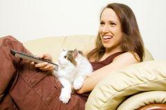 Pourquoi le chat piétine et malaxe ?