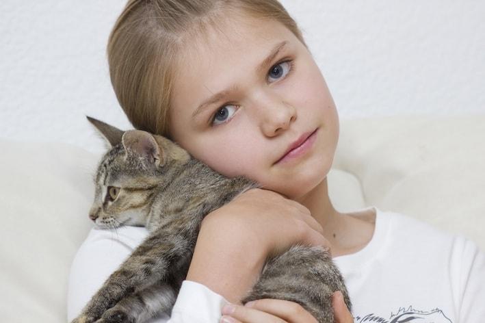 parasites internes chez le chat des vers ronds et plats dangereux sant vet. Black Bedroom Furniture Sets. Home Design Ideas