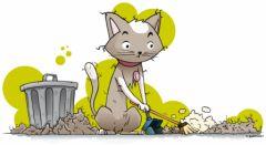 mue du printemps et d automne du chat attention aux boules de poils sp cial chats d. Black Bedroom Furniture Sets. Home Design Ideas