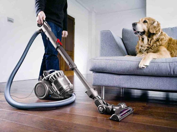 dyson : l'inventeur de l'aspirateur à qui les chiens disent merci