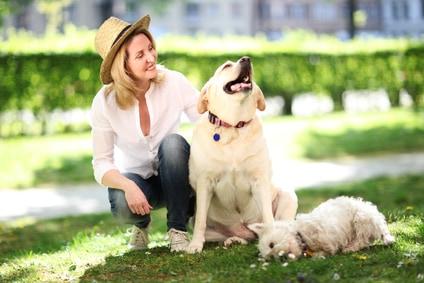 faire garder son chien chat et maison pour les vacances trucs astuces chien sant vet. Black Bedroom Furniture Sets. Home Design Ideas