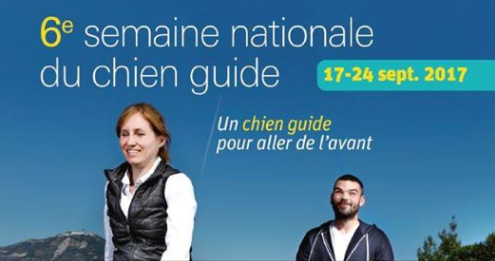 6eme semaine nationale du chien guide daveugle