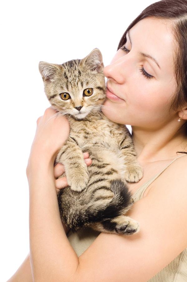 Chiens et chats pourquoi ont ils toutes ces manies trucs astuces chien sant vet - Chat qui dort sur son maitre ...