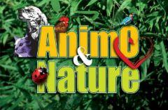 1er 2 octobre avignon 3 000 chiens 350 chats et d - Salon animaux avignon ...