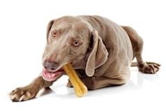 friandises chien et chat que choisir alimentation chien sant vet. Black Bedroom Furniture Sets. Home Design Ideas