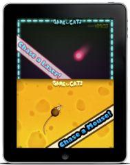 un jeu pour chat sur l 39 ipad actualit chat sant vet. Black Bedroom Furniture Sets. Home Design Ideas