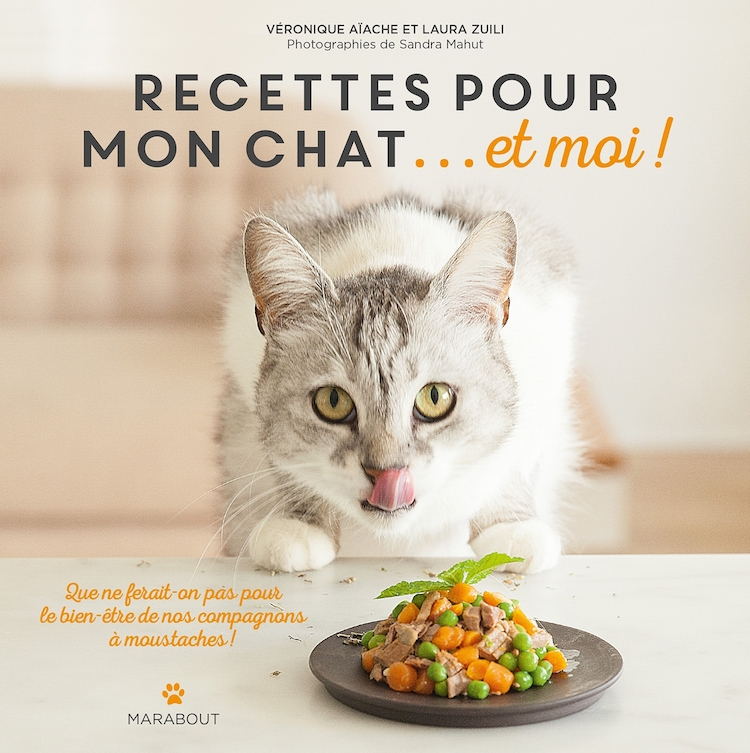 Quelles recettes maison pour mon chat et pour moi for Alimentation maison pour chien