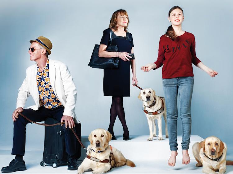 Semaine du chien guide d'aveugle: rendez-vous en septembre