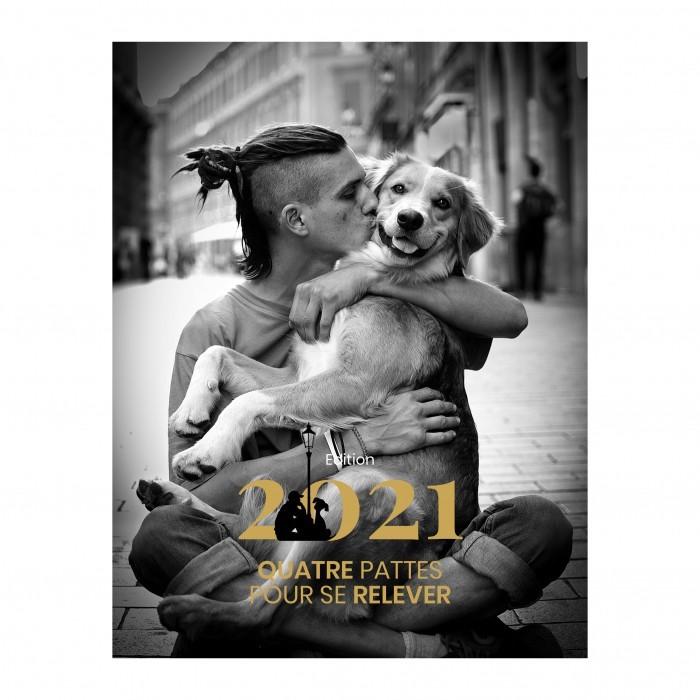 Calendrier Confirmation Canine 2021 4 pattes pour se relever » : un calendrier solidaire   actualité
