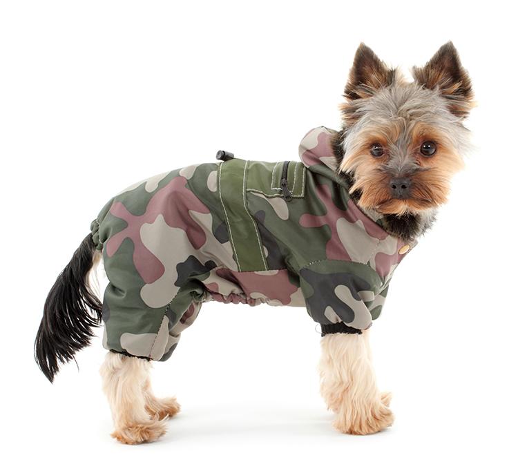 manteaux pour chiens yorkshire